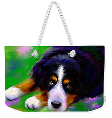 Bernese Mountain Dog Portrait Print Weekender Tote Bag by Svetlana Novikova