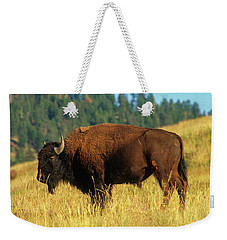 Bison Bull In The Late Evening Magic Light Weekender Tote Bag by Jerry Voss