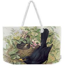Blackbird,  Weekender Tote Bag by John Gould