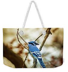 Blue Jay Weekender Tote Bag by Robert Frederick