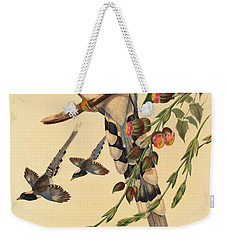 Blue Magpie, Urocissa Magnirostris Weekender Tote Bag by John Gould
