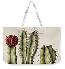 Cacti Weekender Tote Bag by Annabel Barrett