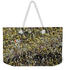 Camouflaged Red-bellied Woodpecker Weekender Tote Bag by Carolyn Marshall