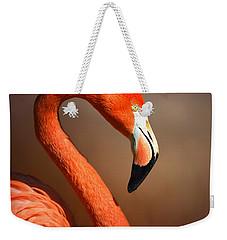 Caribean Flamingo Portrait Weekender Tote Bag by Johan Swanepoel