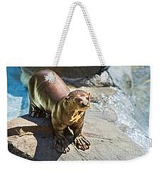 Catching Some Sun Weekender Tote Bag by Jamie Pham