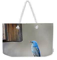 Checking The Nest Weekender Tote Bag by Mike Dawson