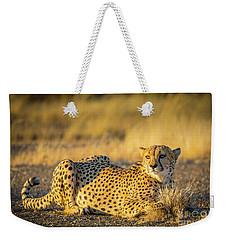 Cheetah Portrait Weekender Tote Bag by Inge Johnsson