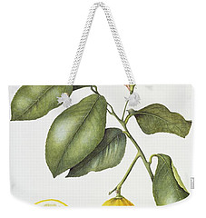 Citrus Bergamot Weekender Tote Bag by Margaret Ann Eden
