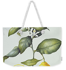 Citrus Lemon Weekender Tote Bag by Margaret Ann Eden