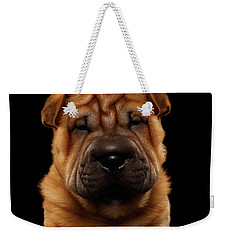 Closeup Funny Sharpei Puppy Isolated On Black Weekender Tote Bag by Sergey Taran