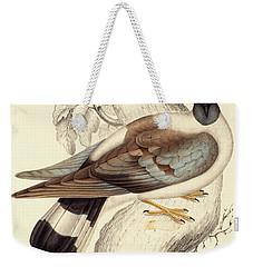 Columba Leuconota, Snow Pigeon Weekender Tote Bag by Elizabeth Gould