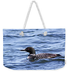 Common Loon Weekender Tote Bag by Teresa Zieba