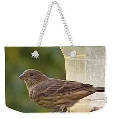 Crossbill Female Portrait      September    Indiana Weekender Tote Bag by Rory Cubel