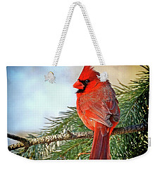 Weekender Tote Bag featuring the photograph December's Cardinal by Rodney Campbell