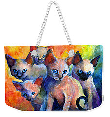 Devon Rex Kitten Cats Weekender Tote Bag by Svetlana Novikova