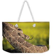 Diamondback And Canola Field Weekender Tote Bag by Chris Harris