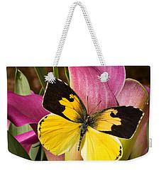 Dogface Butterfly On Pink Calla Lily  Weekender Tote Bag by Garry Gay