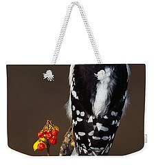 Downy Woodpecker On Tree Branch Weekender Tote Bag by Panoramic Images