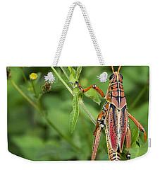 Eastern Lubber Grasshopper  Weekender Tote Bag by Saija  Lehtonen