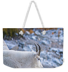 Enchantments Local Goat Resident Weekender Tote Bag by Mike Reid