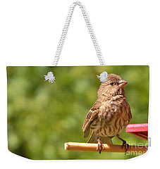 Female Crossbill At Feeder      Summer      Indiana Weekender Tote Bag by Rory Cubel
