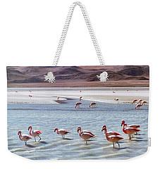 Flamingos Weekender Tote Bag by Sandy Taylor