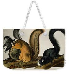 Fox Squirrel Weekender Tote Bag by John James Audubon