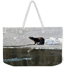 Frosty River Otter  Weekender Tote Bag by Mike Dawson