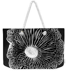 Fungi Two Weekender Tote Bag by Jim Occi