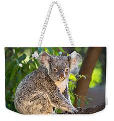 Good Morning Koala Weekender Tote Bag by Jamie Pham