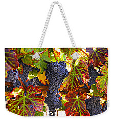 Grapes On Vine In Vineyards Weekender Tote Bag by Garry Gay