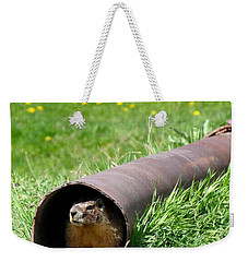 Groundhog In A Pipe Weekender Tote Bag by Will Borden