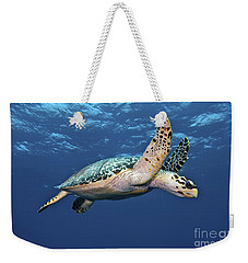 Hawksbill Sea Turtle In Mid-water Weekender Tote Bag by Karen Doody