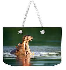 Hippopotamus Weekender Tote Bag by Johan Swanepoel