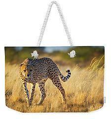 Hunting Cheetah Weekender Tote Bag by Inge Johnsson