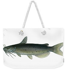 Illustration Of A Channel Catfish Weekender Tote Bag by Carlyn Iverson