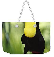 Keel Billed Toucan Calling Weekender Tote Bag by Gerry Ellis