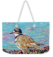Killdeer  Weekender Tote Bag by Ken Everett