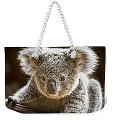 Koala Kid Weekender Tote Bag by Jamie Pham
