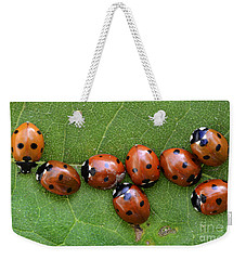 Lady Bugs  Weekender Tote Bag by Bob Christopher