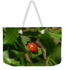 Ladybug Weekender Tote Bag by Carol Groenen