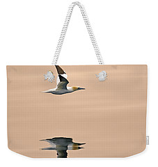 Late Arrival Weekender Tote Bag by Tony Beck