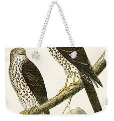 Levant Sparrow Hawk Weekender Tote Bag by English School