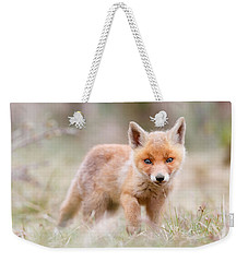 Little Fox Kit, Big World Weekender Tote Bag by Roeselien Raimond