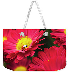 Little Red Ladybug Weekender Tote Bag by Christina Rollo