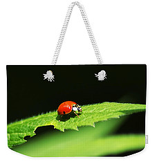 Little Red Ladybug On Green Leaf Weekender Tote Bag by Christina Rollo