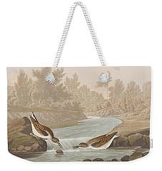 Little Sandpiper Weekender Tote Bag by John James Audubon