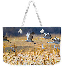 Low Level Flyby Weekender Tote Bag by Mike Dawson