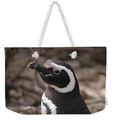 Magellanic Penguin No. 1 Weekender Tote Bag by Sandy Taylor