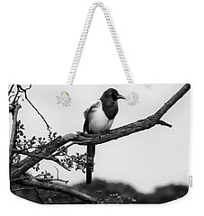 Magpie  Weekender Tote Bag by Philip Openshaw